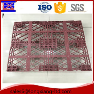 1100*1100 Plastic Pallet, Palstic Tray, Pallet Factory pictures & photos
