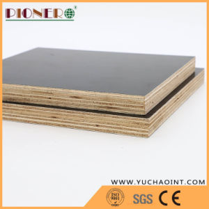 Wholesale Material Plywood