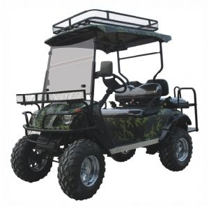 Lifted Golf Cart, Electric, 4 Seats with Foldable Seat, Eg2020asz pictures & photos