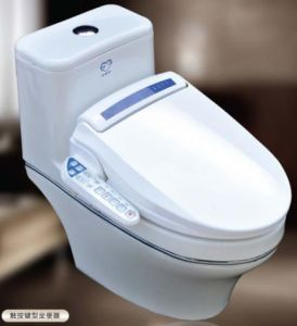 China Toilets With Built In Bidet China Paperless Toilet Wc