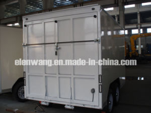 Cargo Van With Rear Ramp Door (GW-BLV14)