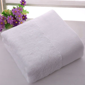 Hemstitch High Quality Cotton Terry Hotel Towel (DPFT8005) pictures & photos