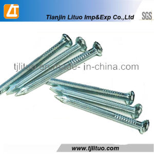 Harden Steel Nails, 45c Steel Concrete Nails pictures & photos