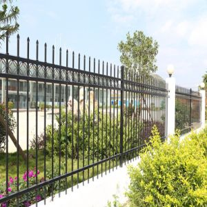 Metal Spear Picket Ornamental Fence pictures & photos