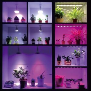 Aluminum Plastic Shell LED Grow Light pictures & photos