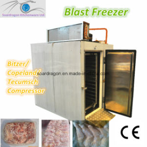 Blast Freezer/Deep Freezer /Quick-Freezer with Bitzer Compressor (BF-4-S) pictures & photos