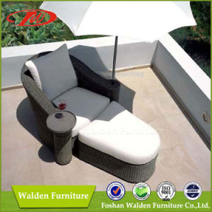Rattan Chaise Lounger Set (DH-7300) pictures & photos