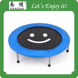 Mini Trampoline for Sale with Enclosure pictures & photos