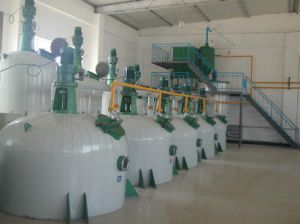 China Hot-Sale Peanut Oil Refinery pictures & photos