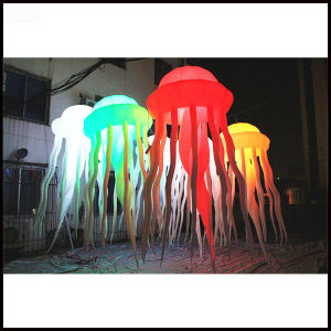 2017 New Most Popular Inflatable Jellyfish pictures & photos