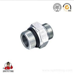Hydraulic Pipe Fitting / 1b / Bsp Male 60 Degree / Bsp Straight Male Tube Fitting pictures & photos