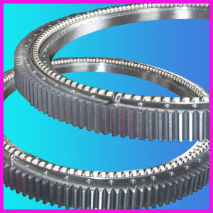 Slewing Bearing with 1 Year Warranty Period 192.20.1250.990.41.1502 pictures & photos