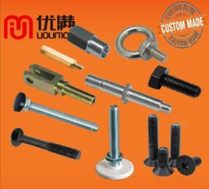 Customized CNC Machining Parts Flange Bolt/Hex Bolt/Carriage Bolt/Foundation Bolt/Anchor Bolt/Fasteners
