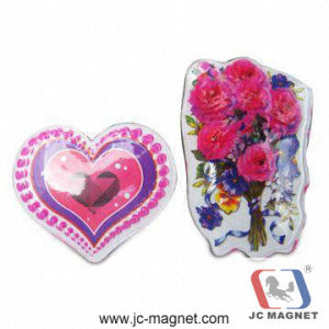 High Quality Polyresin Fridge Magnet pictures & photos