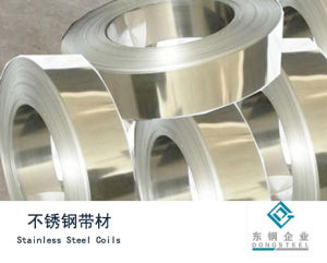 Stainlesss Steel Coils