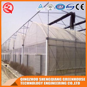 Agriculture Multi Span Indoor Growing Tent Plastic Film Green House pictures & photos