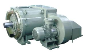 Petroleum Drilling Motor