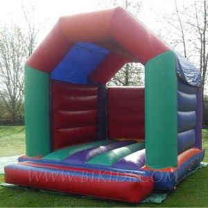 Inflatables, Inflatable Bouncer, Inflatable Castle (B1033) pictures & photos