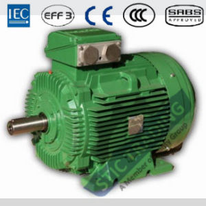 IEC Cast Iron Ie3 2pole High Efficiency AC Motor