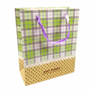 Fashion Dress Package Gift Bag pictures & photos