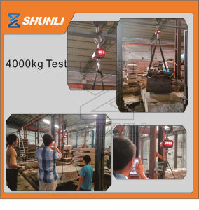 Stronger Basement 4000kg Lifting Hoist pictures & photos