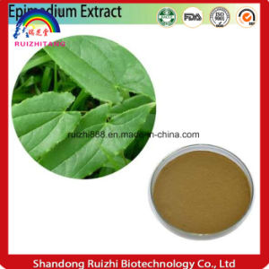 High Quality Horny Goat Weed P. E. / Epimedium Extract Icariincas No: 489-32-7