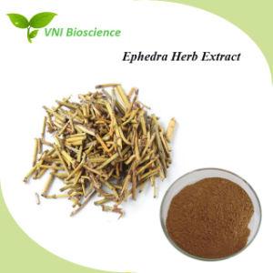 China Ephedra Extract Powder Distributors, Ephedra Extract