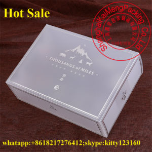 China Silver Foil Printing Pet Clear Plastic Gift Box UK