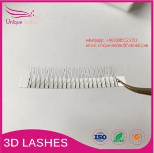 20dc77d4466 Wholesale Price Korean PBT 3D Pre-Made Volume Fans Eyelash Extension D Curl  2D 3D
