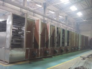 Mesh-Belt Drying Machine (DW) pictures & photos