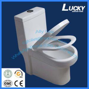Henan Factory S-Trap 250mm/300mm Toilet Saudi Arabia Siphonic Flush Sanitary Ware Bathroom