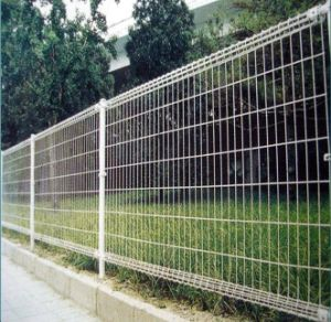 Galvanized or Powder Coated Wire Mesh Fence (Kjfence)