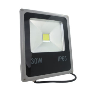 30W Outdoor Flood Light LED Lighting IP66 with CE, RoHS pictures & photos