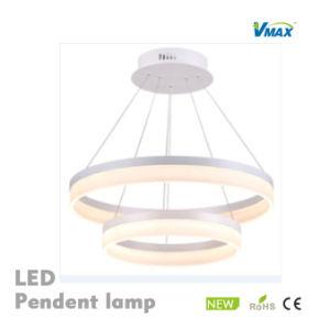 LED Fancy Lamp Acrylic Aluminium Body Modern Decorative Light