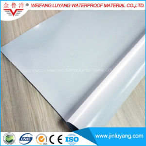 High Quality Homogeneous PVC Waterproof Membrane for Building Roof