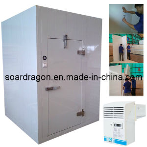 Polyurethane Insulated Cold Room with OEM Design pictures & photos