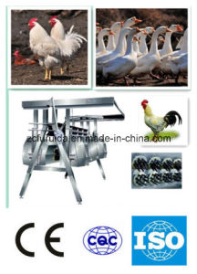 Automatic Chicken Plucker / Slaughtering Machine / Dehairing Machine pictures & photos