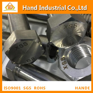 Stainless Steel Bolt ASME A194 B8 B8m M27 Hexagonal Nut pictures & photos