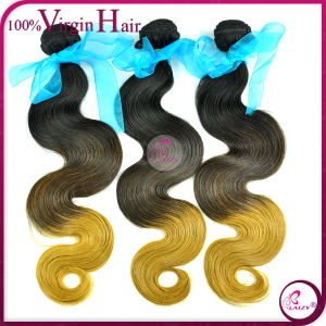 Directly Factory Wholesale Price Ombre Brazilian Hair (Ombre hair-BW)