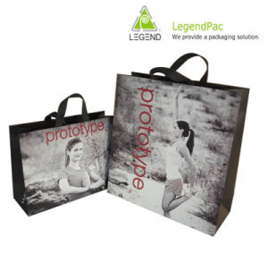 Paper Shopping Bag (LPPS-024)