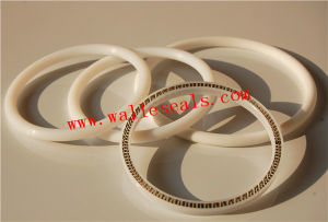 Excellent Chemical Resistance Peek Spring Energized Seals pictures & photos