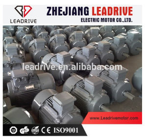 IE2 Hight Efficiency Three Phase Electric Motor pictures & photos