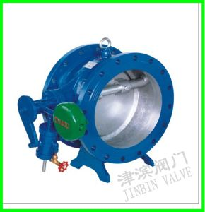 Check Valve with Lever and Weight