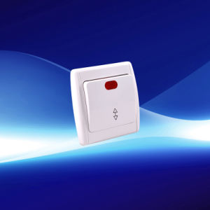 1 Gang 2 Way Wall Switch with Indicator (YW21101-D)
