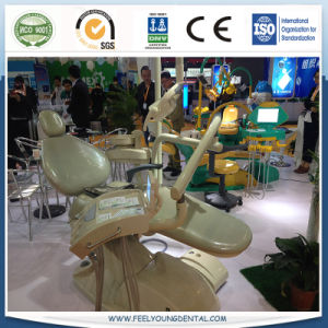 Economic Dental Chair Unit with Ce, ISO