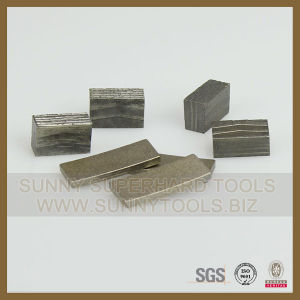 Diamond High Quality Segment for Various Stone (SY-SB-268) pictures & photos
