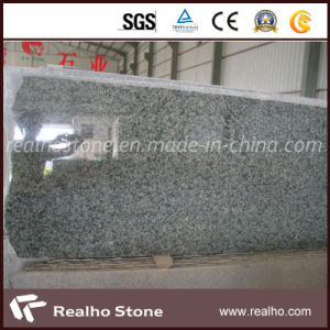 China Ocean Green Granite for Countertop