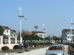 30W Wind Powered LED Light for Road Lighting