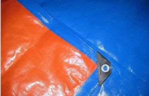 Trade Assurance Supplier Factory Price China PE Tarpaulin