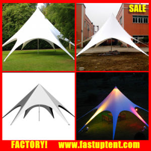 Outdoor Advertising Display Star Canopy Tent for Sale & China Outdoor Advertising Display Star Canopy Tent for Sale ...